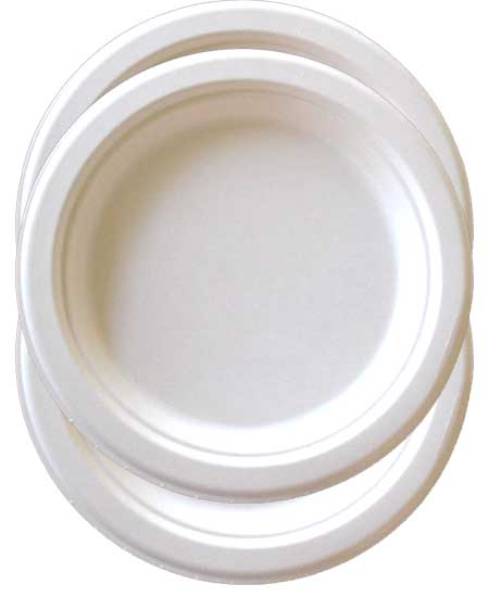 Image of Biodegradable and compostable 9 inch plates  sc 1 st  + Go Green In Stages & Biodegradable compostable 9 inch plates bagasse